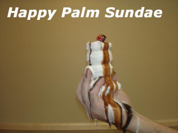 Palm Sudae